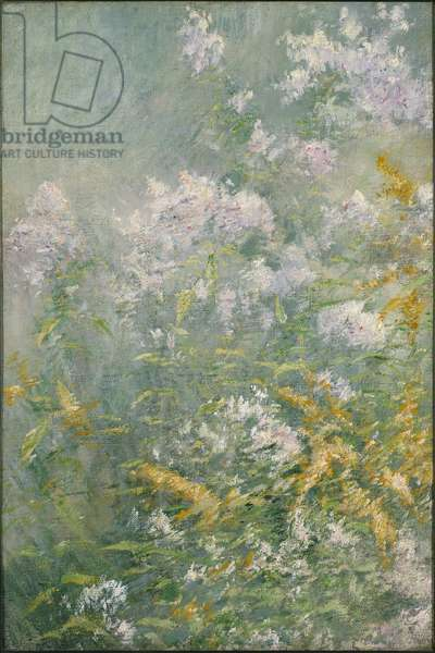 Meadow Flowers (Golden Rod and Wild Aster), c.1892 (oil on canvas)