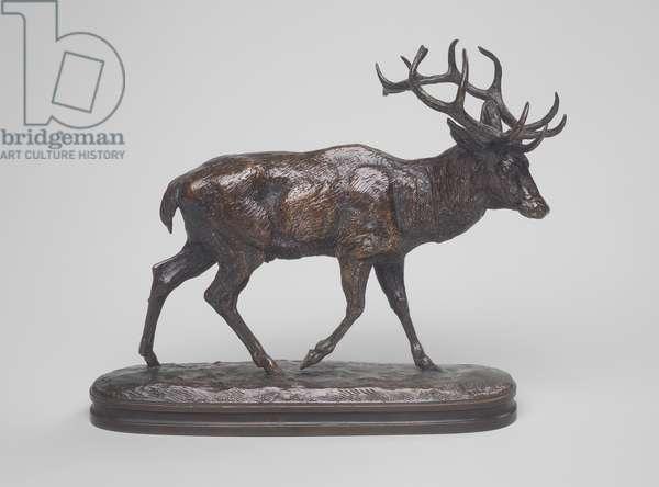 Stag Walking (bronze)