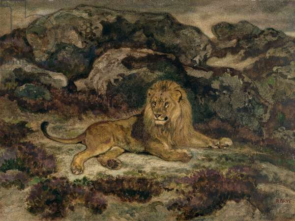 Lion Reclining (w/c on paper)