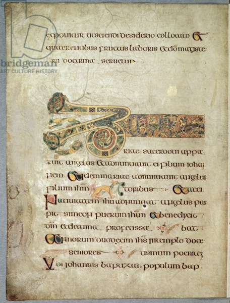 Ms 58, f.91v: Page from the Book of Kells with 'turn in the path' and 'head under wing' decoration, c.800 (vellum)