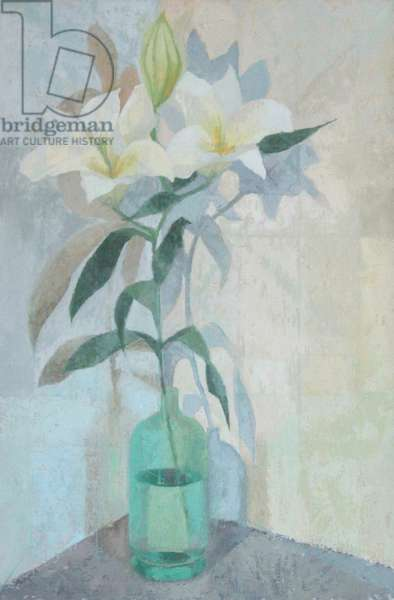Lily Shadows, 2012 (oil on gesso panel)