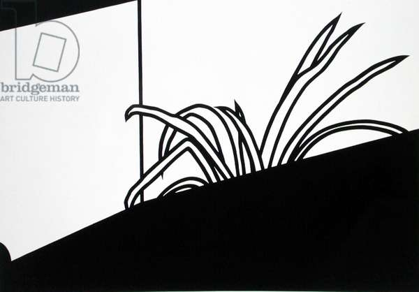 Spider Plant, 1973 (screenprint)
