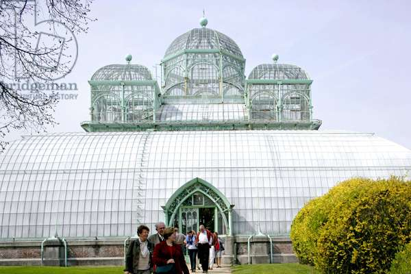 Royal greenhouses, Avenue du Parc in Laeken, Belgium. In the 19th century, glass and metal as new building materials allowed the construction of a new type of building: the greenhouse. King Leopold II (1835-1909) entrusted the architect Alphonse Balat (1818-1895) with the construction of an ideal glass palace, completed 1873. Open to the public three weeks a year, the Royal Greenhouses of Laeken house an exceptional collection of plants, some dating back to Leopold II. Photography 30/04/06.