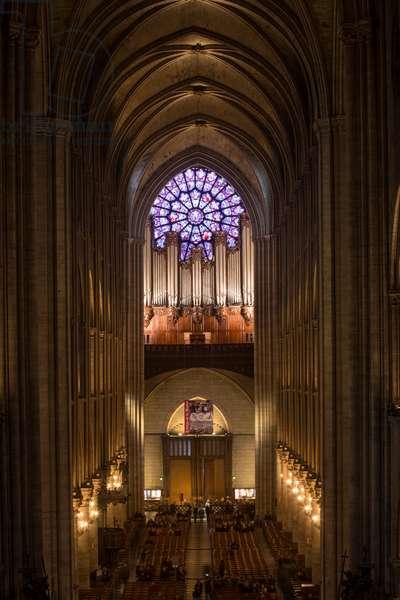 View of the organ, Notre Dame de Paris Cathedral, Paris, France, 2014 (photo)