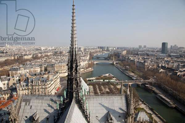 View of the lead roof of the Cathedrale Notre Dame de Paris
