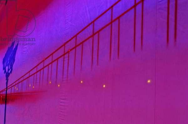 Graphic Effect Bache, Pepetit Palais, Paris 8