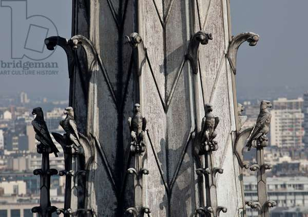 Detail of the spade of the Notre Dame de Paris cathedral