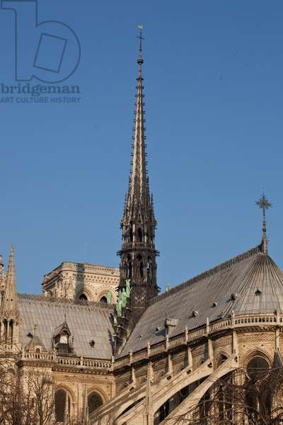 View of the lead roof of the Cathedrale Notre Dame de Paris dominated by the arrow.