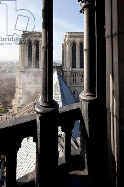 Cathedrale Notre Dame de Paris seen from the arrow