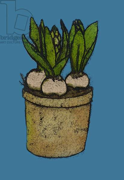 Hyacinths in a pot, 2012 (monoprint with inks)