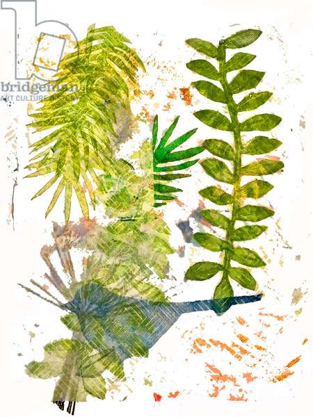 Botanical jungle ,2019,(monoprint on paper)