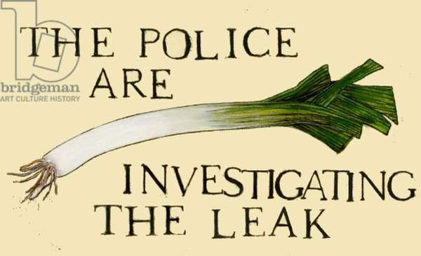 The police are investigating the leak