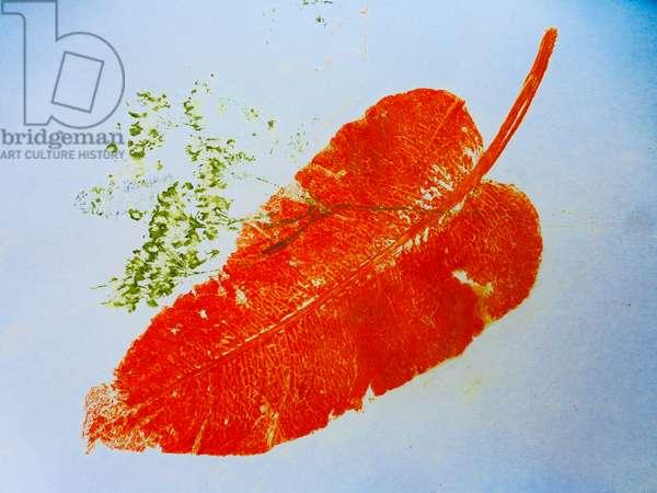 Orange leaf (monoprint on paper) 2020