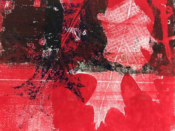 'Red leaf' 2019 (monoprint)