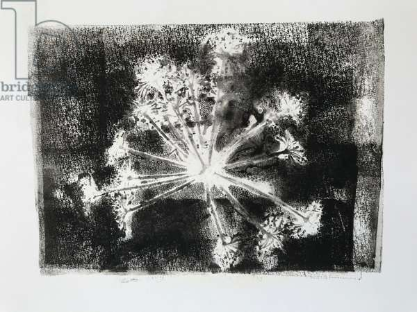 Seedhead II,2020,(monoprint)