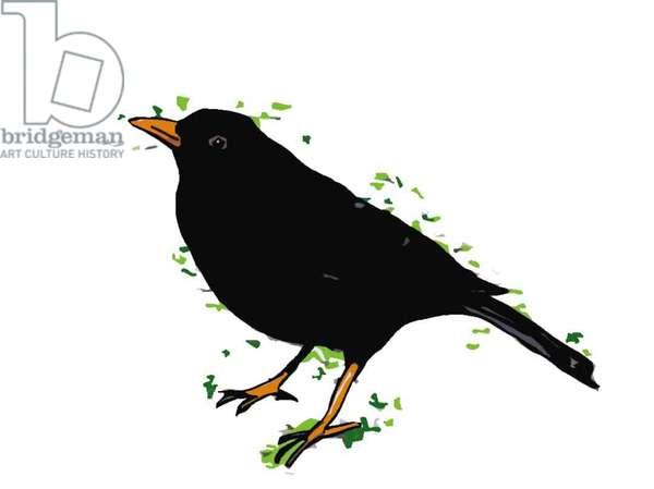 Blackbird,2018,(digital drawing)