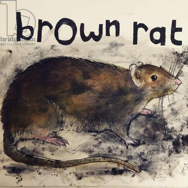 Brown rat,2021,(ink on paper)