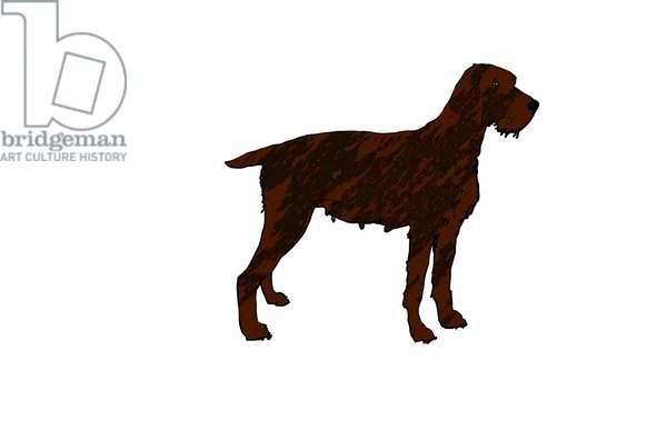 Dog,2018,(digital drawing)