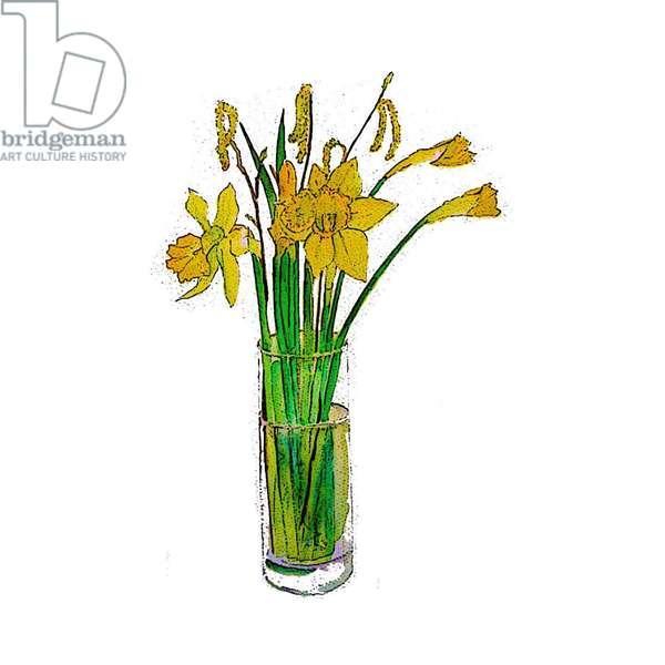 Yellow Daffodils