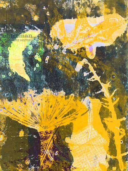 'yellow moon' 2019 (mono print)
