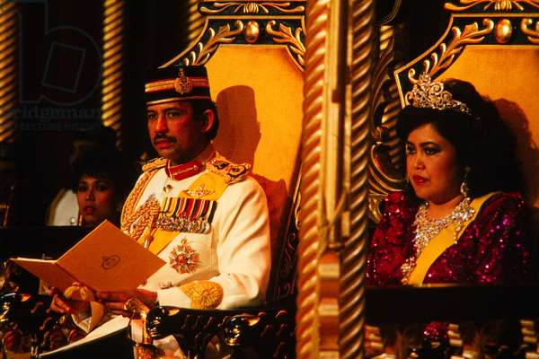 The Sultan of Brunei and Queen consort (photo)