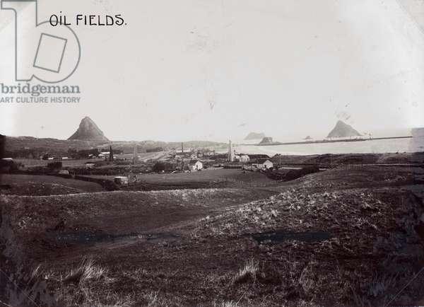 Oil Fields, New Plymouth (b/w photo)