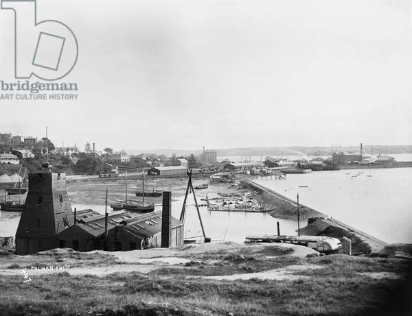 Early Auckland, c.1869-1900 (silver gelatin print)
