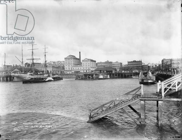 Auckland from the wharves, 1905 (silver gelatin print)