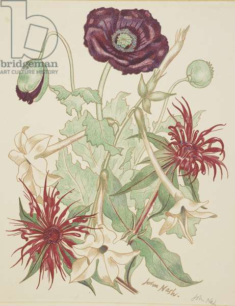 Flowers (litho)