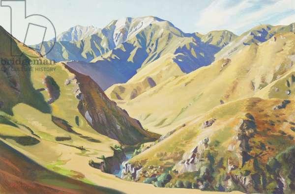 Orari Gorge, summer, 1968 (oil on hardboard)