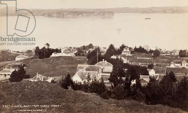 Auckland from the North Shore (albumen silver print)