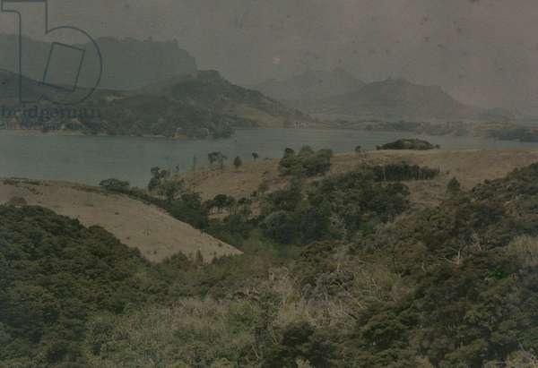 Parua Bay, 1915 (photo)