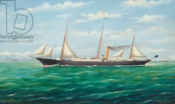 The S.S. Hinemoa off the Kaikouras, New Zealand, 1911 (oil on canvas)