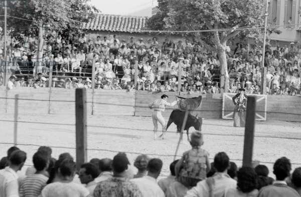 Bullfight in Vallauris, France 1955 (b/w photo)
