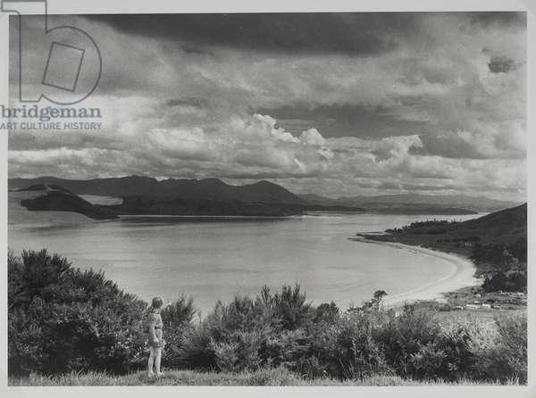 Robert Lee-Johnson standing on hillside, Hokianga Harbour, 1956 (gelatin silver print)