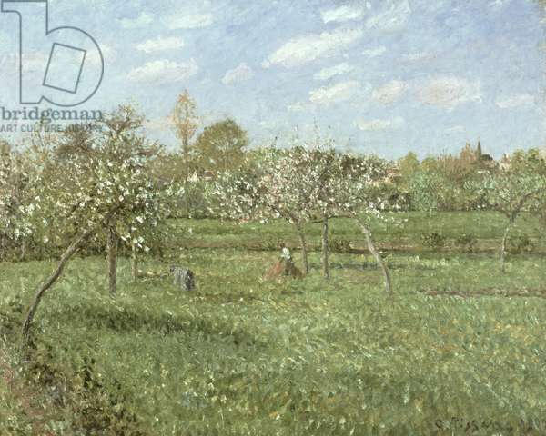 Spring Morning, Cloudy, Eragny, 1900 (oil on canvas)