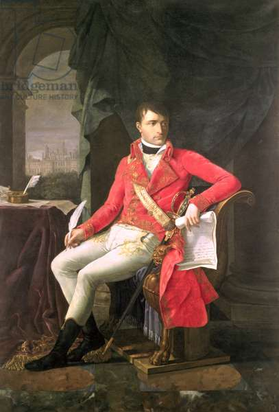 Napoleon (1769-1821) as First Consul, 1803 (oil on canvas)