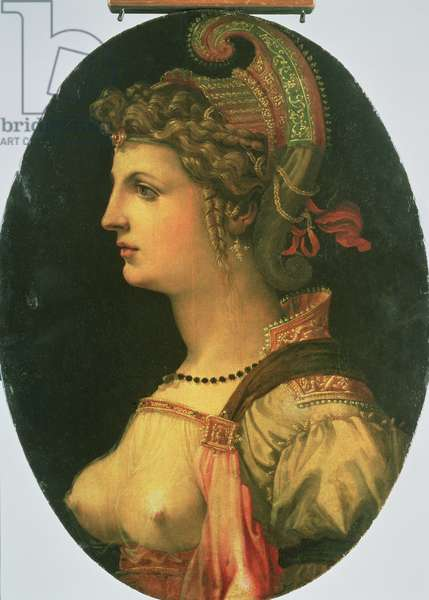 Portrait of Vittoria Colonna (oil on panel)