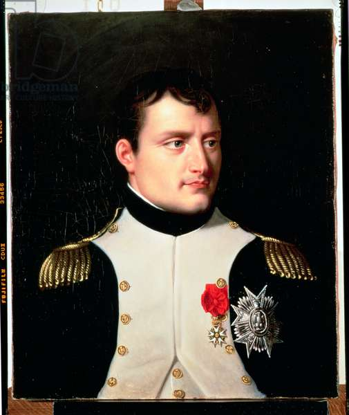 Portrait of Napoleon I (1769-1821) (oil on canvas)