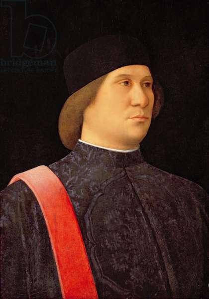 Portrait of a Procurator, c.1507 (oil on panel)