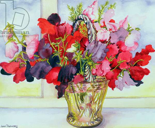 Sweet Peas in a Vase (w/c on paper)