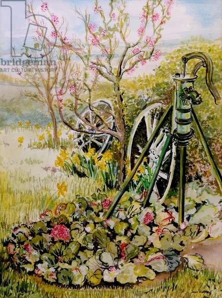 The Garden Pump,2010,watercolour