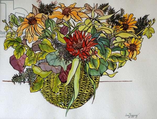 Rudbeckia with foliage in a basket, 2011,(pen, ink and watercolour)