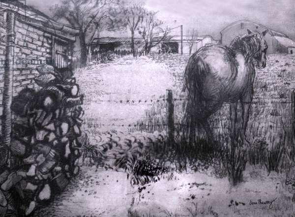 Horse Resting his Leg,2000, (ink on wet ingres paper)