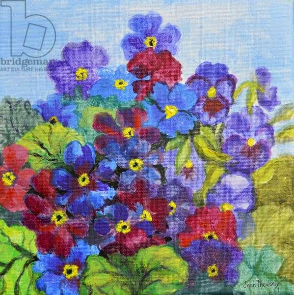 Blue Primroses,2017, (acrylic)