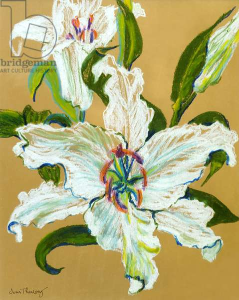 The white lilies (pastel on coloured Ingres paper)