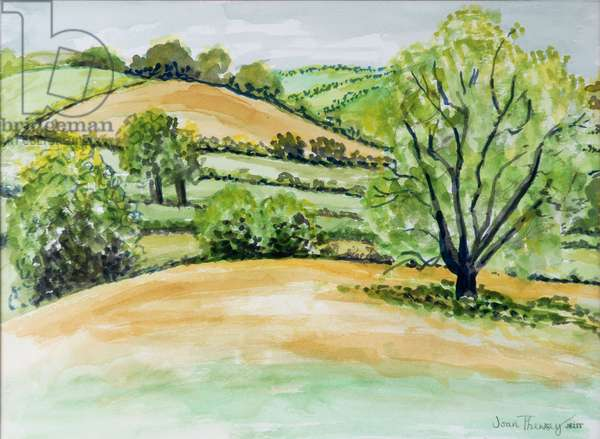 Suffolk Landscape, view from Dalham Church, 2011, water colour