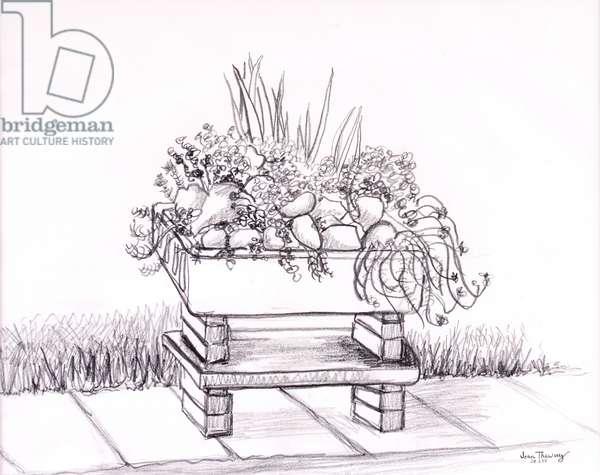 The Sink Garden,2000,graphite