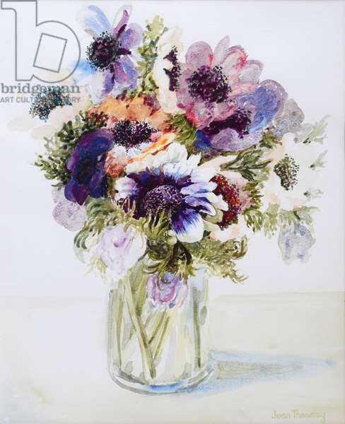 Anemones in a Glass Jug, 2000, (w/c on paper)