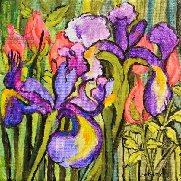 Irises and Roses,2017, (acrylic)